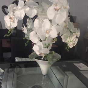 Vase coupe orchidée neuve hauteur 70 cm