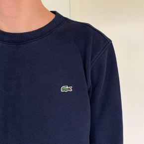 Sweatshirt fra Lacoste i mørkeblå.