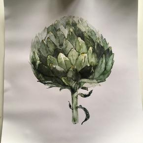 2 plakater fra IKEA med plantemotiv. Måler 40x50 cm. Byd.