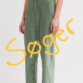 Wood Wood andre bukser & shorts