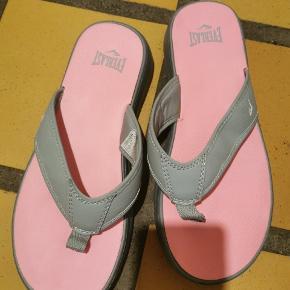 Everlast sandaler
