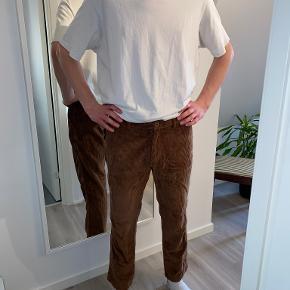 Palace bukser