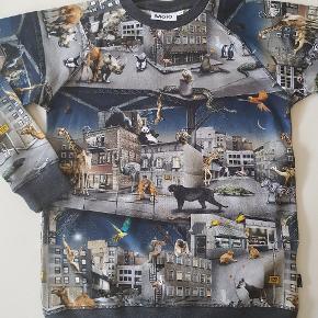 T-shirt med city animals. Ny (uden mærke). Str 152.   Sender også. Det koster 38 kr med Dao.