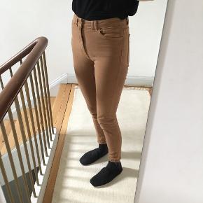 American Apparel bukser