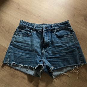 Envii Shorts