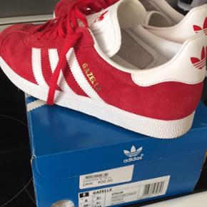 Sælger mine sprit nye Adidas gazelle. Fortryder købet da farven ikke helt er mig. Men de er super fede! Kom med et bud :-)