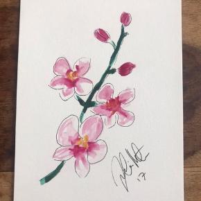 Orkide Akvarel 14,8 x 21 cm (standard A5 mål)