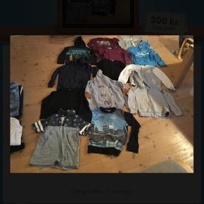 Drengetøj str 146-152, 12 bluser/hættetrøjer samt 1 t-shirt