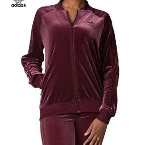 Super fedt Adidas Velvet tracksuit i den smukkeste bordeaux farve. Har været brugt to gange og fremstår rigtig pænt.   Bukserne er en str xs og blusen en størrelse 40 (M ca).   Nypris 1599,-  OBS, Adidas logoet er guld på mit og har logo syet på ryggen!