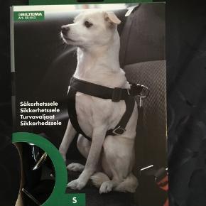 Helt ny sikkerhedssele til hund i str S.  Brystmål 30-45 cm. Fra biltema  Byd