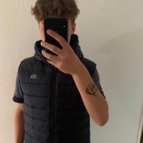 LACOSTE vest