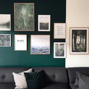 Fantastisk grøn billedevæg bestående af 9 plakater og træ rammer - alt fra Desenio.  Sælges til halv pris i forhold til den samlede nypris pga. flytning.