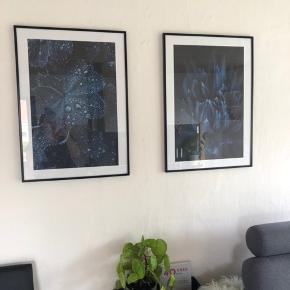 To fine plakater fra Desenio.  50x70 - sælges UDEN rammer.  Nypris er 360 kr og sælges for 200 kr