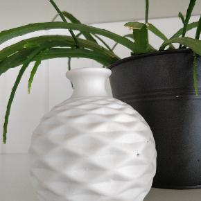 Sød lille buttet vase
