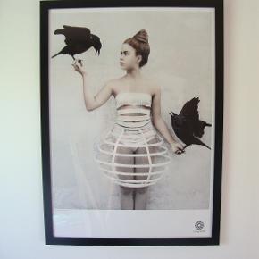 Plakat fra Vee Speers fotoserie Thirteen. Pigen med kragerne.   Mål 50x70 cm.