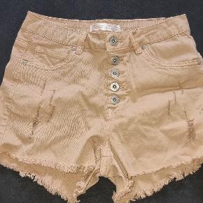 Buch Copenhagen shorts