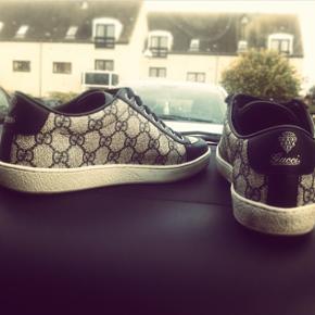 Fede sneakers købt i Harrods London. Har original æske samt bag. Har ikke kvitteringen længere, men kan verificeres hos Gucci København.