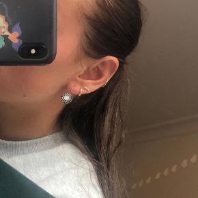 Hultquist ørering
