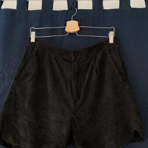 InWear shorts