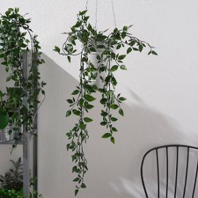 Har 3 af disse fine falske planter.