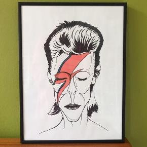 Tryk af David Bowie Kommer med signatur og uden ramme A4 100kr A3 150kr  A5 250kr