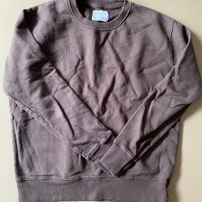 Colorful Standard sweater