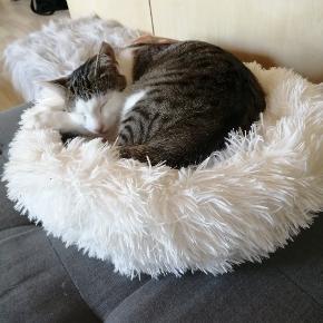 Katte seng. Blød og fluffy. Ikke brugt ret meget.