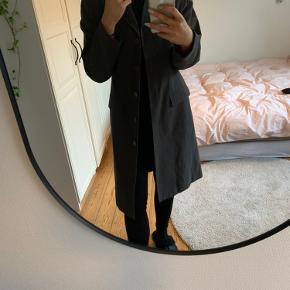 B.young frakke