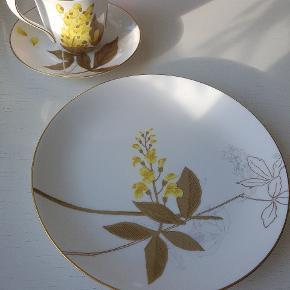 Royal Copenhagen Flora Guldregn sæt.  Frokost tallerken 22cm  Aldrig brugt før, og kommer i original kasse :-)