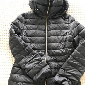 Massimo Dutti jakke