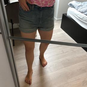 B&G shorts