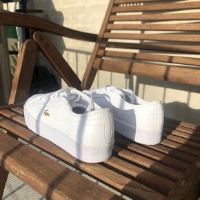 - Sælger disse lacost sko - Brugt meget få gange, fejler intet - Størrelse 40,5 - Ny pris: 699kr - Kvittering haves - Skriv hvis i har nogle spørgsmål