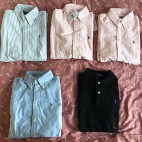 Jeg sælger disse helt nye og originale Ralph Lauren dame tøj. Alle de øverste er i S samt den sorte polo. Den nederste skjorte i blå er XS. Har dokumentation på ægtheden. :D  Pris: 300 pr stk eller alt for 1000. Kan afhentes i Århus eller sendes med DAO.