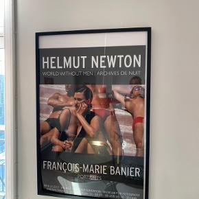 Helmut Newton plakat med ramme.