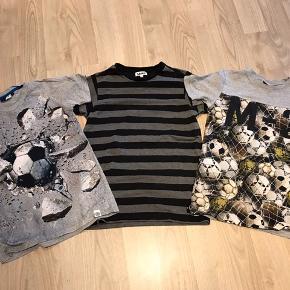 3 fine Molo T-shirts Pr. Stk. 100 Alle 3 for 200.-
