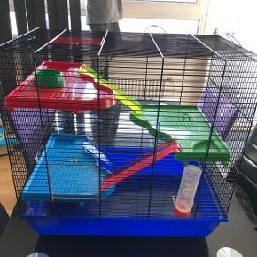 Stort hamster bur Bredde 57cm Dybde 38 cm Højde 55cm Nypris 1000kr
