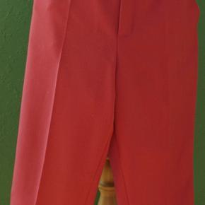 Brandtex Shorts