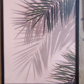 Plante, inkl. ramme - mål: 40*50 Superfin plakat fra Desenio 🖼🌻  Har kun lige været oppe og hænge, men fortrød valget.   Alle fem plakater med rammer kan købes som samlet sæt for 900kr 🙌🌟