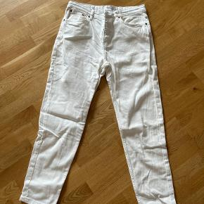 MNG jeans