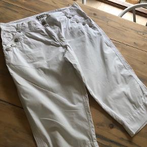 Gustav shorts