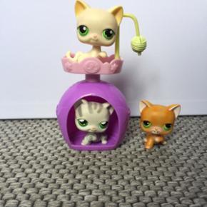 Little Pest Shop, Cat House 3 Cats 1 House