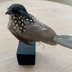 Lille pynte-fugl 🦆