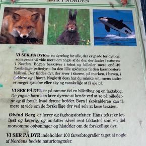 Vi ser på dyr - fast pris -køb 4 annoncer og den billigste er gratis - kan afhentes på Mimersgade 111 - sender gerne hvis du betaler Porto - mødes ikke andre steder - bytter ikke