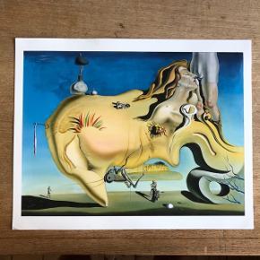 Tryk af Dalí maleri. Måler 24 x 30 cm. Har et lille bøj i et af hjørnerne, men ikke noget man lægger mærke til - specielt ikke, hvis den er i ramme.  Kan sendes eller hentes i Aarhus eller Kbh.😊
