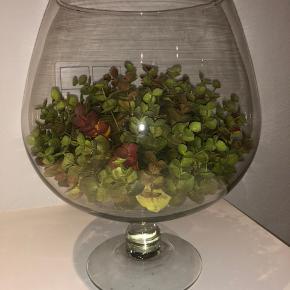 """""""Bowle"""" ca. 29 i højde Fod: 13 cm Top: ca. 16 cm Kan bruges til planter, Terranium eller andet"""