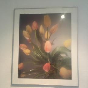Sødt tulipan billede i dusche farver, drømmeaktigt😊Har en del kunst på min side, så kig gerne nærmere😊