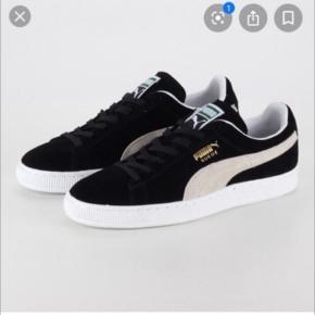 Hej, jeg sælger disse sko. De er næsten aldrig brugt. Skriv endelig for flere billeder😊