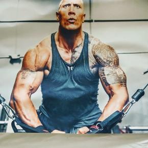 Plakat med Dwayne Johnson i fitness centeret. Måler 50 x 70