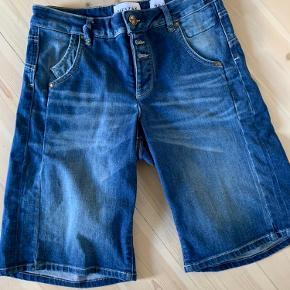 Pieszak shorts