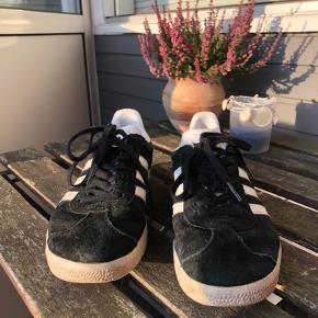 Adidas Gazelle sko. Kun brugt et par gange, har dog kun få tegn på brug i og under skoen. 😊